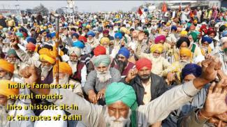 farmers are a historic sit-in at the gates of Delhi